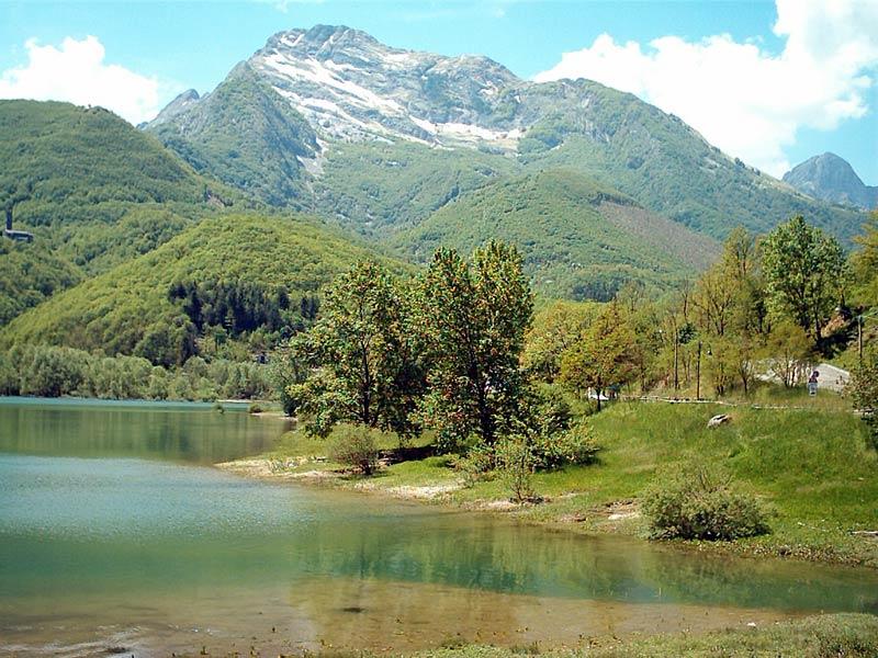 Alpi-5