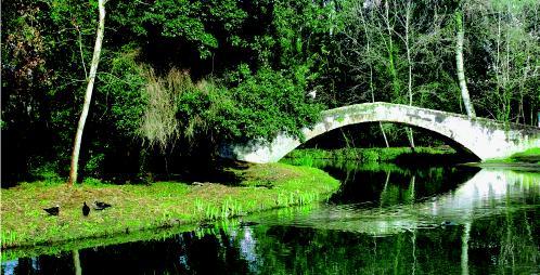 ponte-versiliana
